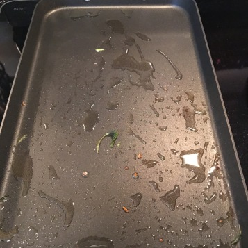 Turn on medium-high heat. Put oil on the hot pan.